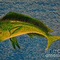 Bull Dolphin Mahimahi Fish by Susan Cliett
