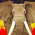Bull Elephant Prime Colors by Frank Middleton