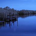 Bull Frog Creek II Gibsonton Fl Usa Near Infrared by Sally Rockefeller