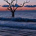 Bull Island Sunrise by Carrie Cranwill