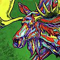 Bull Moose by Derrick Higgins