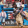 Bull Rider by Dean Wittle