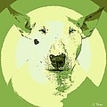 Bull Terrier Graphic 2 by George Pedro