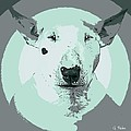 Bull Terrier Graphic 3 by George Pedro