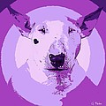 Bull Terrier Graphic 5 by George Pedro