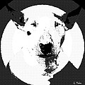 Bull Terrier Graphic 6 by George Pedro