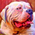 Bulldog Portrait by Iain McDonald