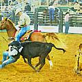 Bulldoggin Cowboys by Alice Gipson