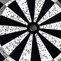 Bull's Eye - Bw01 by Pamela Critchlow