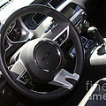 Bumble Bee Interior-7943 by Gary Gingrich Galleries