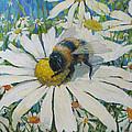 Bumblebee by Juliya Zhukova