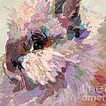 Bun by Kimberly Santini