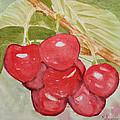 Bunch Of Red Cherries by Elvira Ingram