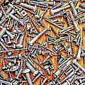 Bunch Of Screws 1- Digital Effect by Debbie Portwood