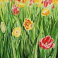 Bunch Of Tulips II by Irina Sztukowski