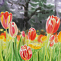 Bunch Of Tulips IIi by Irina Sztukowski