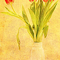 Bunch Of Tulips by Lori Frostad