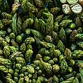 Bunches Of Asparagus On Display At The Farmers Market by Alex Grichenko