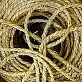 Bundle Of Old Straw Rope by Yali Shi