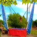 Bungee Trampoline by Jeelan Clark