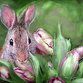 Bunny In The Tulips by Carol Cavalaris