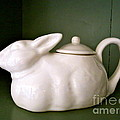 Bunny Teapot  by Nancy Patterson
