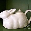 Bunny Teapot  by Nancy Patterson