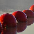 Buoys In Fog by Dianne Cowen