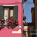 Burano Homes by Timothy Hacker