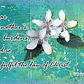 Burden Bearers by Larry Bishop