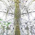 Burden Center Spirit Tree by Lizi Beard-Ward