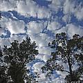Burden Sky by Lizi Beard-Ward