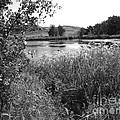 Burford Lake by Mickey Harkins