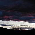 Burgandy Storm  by William McCoy