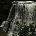 Burgess Falls Tn by Regina Worrell