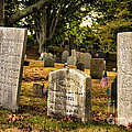 Burial Hill Cemetery-close Up by Nancie DeMellia