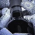 Buried Wine Bottle by Tom Mc Nemar