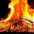 Burning Branches by Claus Siebenhaar