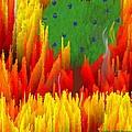 Burning Bush by Dr Loifer Vladimir