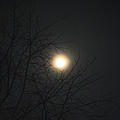 Burning In The Night by Dan McCafferty