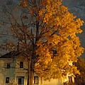 Burning Leaves At Night by Guy Ricketts