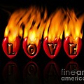 Burning Love  Brennende Liebe  by DoC GermaniCus