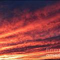 Burning Sky by Irina Hays