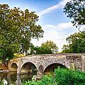 Burnside's Bridge by John Daly
