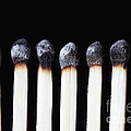 Burnt Matches On Black by Bryan Mullennix