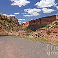Burr Trail Road Through Long Canyon by Rick Pisio