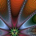 Bursting Star Nova Fractal by Darleen Stry