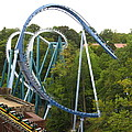 Busch Gardens - 12121 by DC Photographer