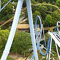 Busch Gardens - 121226 by DC Photographer