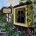 Busch Gardens Scene by Gloria E Barreto-Rodriguez